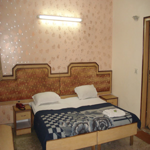 Executive double with city view, queen bed, and private facilities (shower)