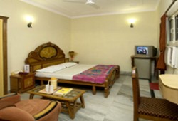 Deluxe double with city view, queen bed, and private facilities (bath and shower)