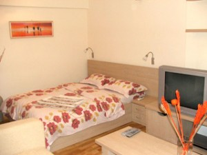 2 person superior studio with city view, queen bed, and private facilities (bath and shower)