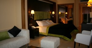 1 person junior suite with pool view, queen bed, and private facilities