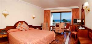 Double for single use with sea view, balcony, private facilities, and breakfast