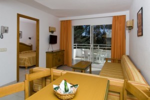 4 person 2 room apartment with terrace, and private facilities