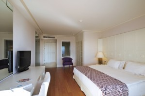 Deluxe single with garden view, balcony, and private facilities