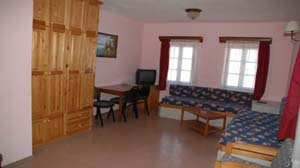 4 person economy apartment with garden view, balcony, and private facilities (shower)