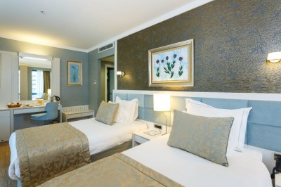 Standard double or twin with city view, french bed, and private facilities (bath and shower)